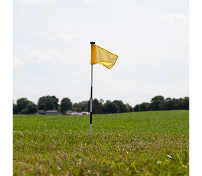 Flag spins freely in the wind.